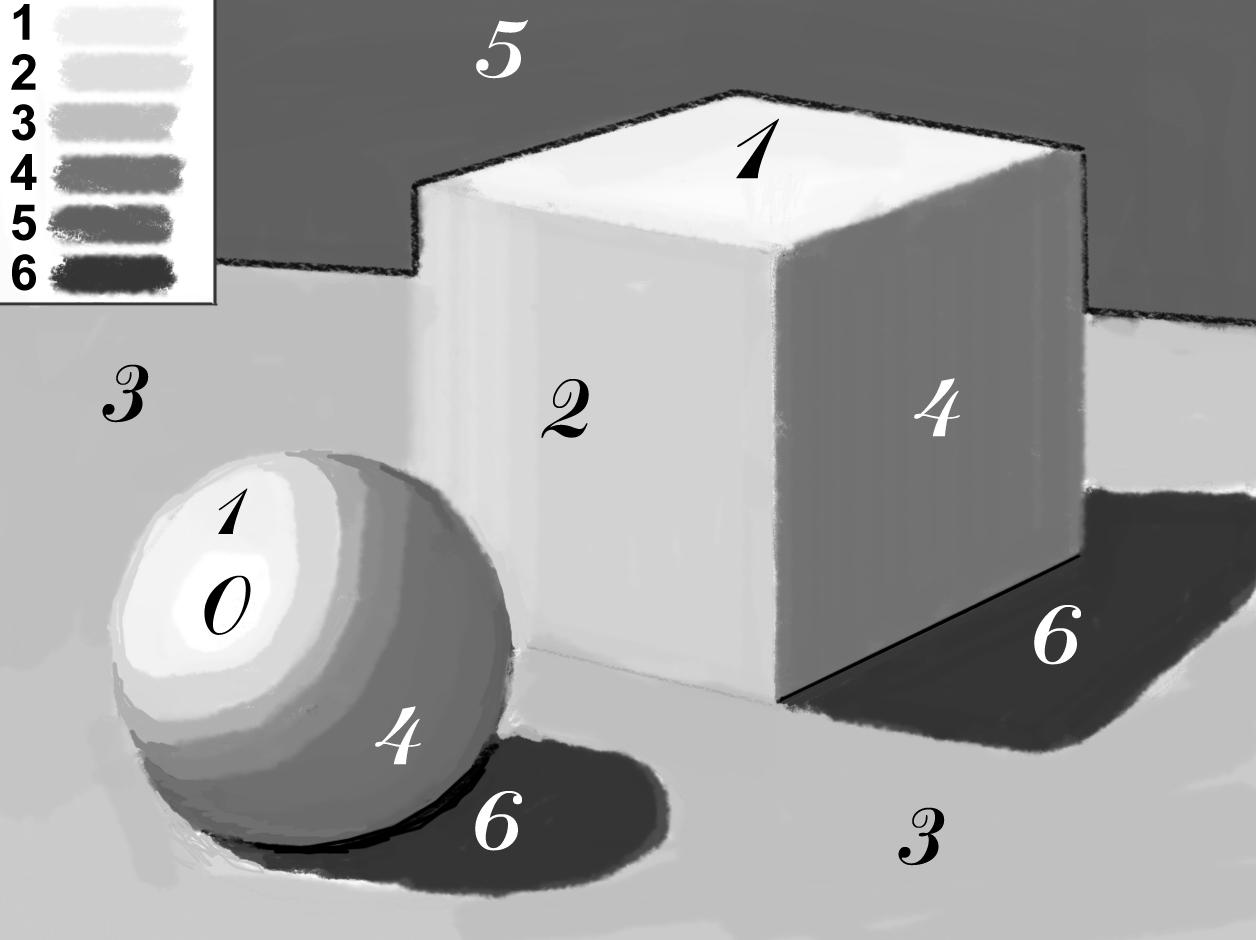 как правильно рисовать свет и тень на курсах рисования