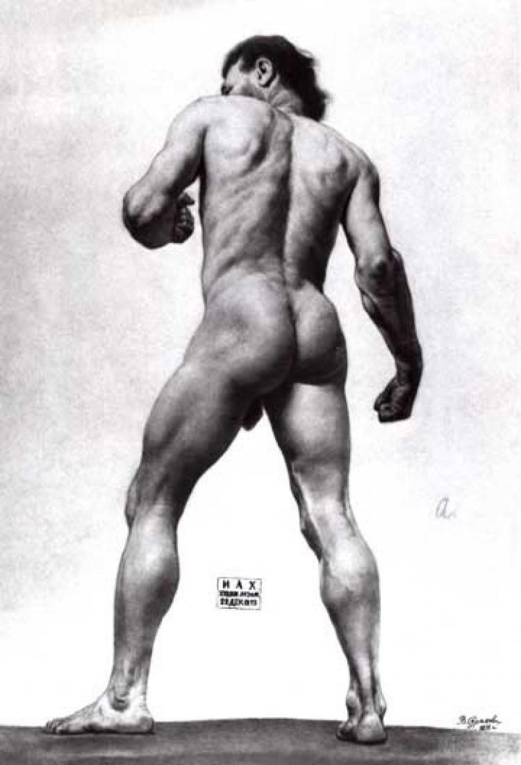 Частный урок анатомии онлайн 15 фотография