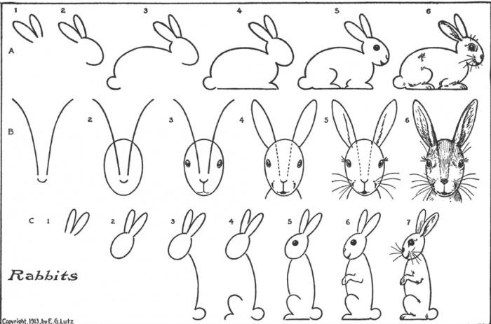 курсы-рисования-иллюс4