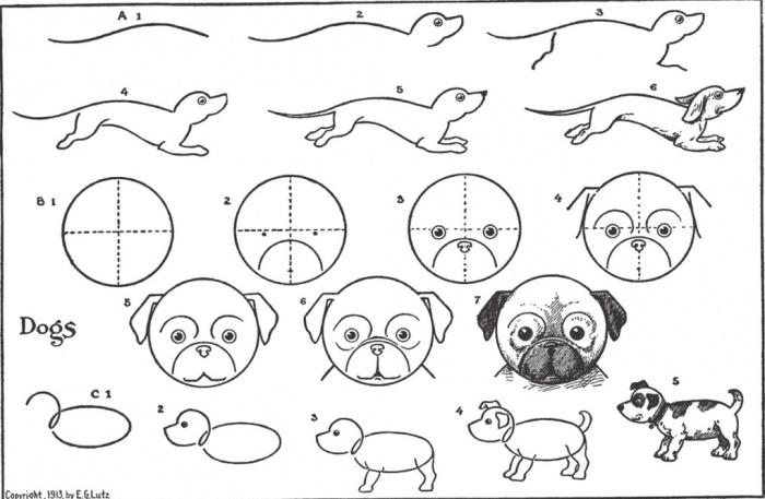 курсы-рисования-иллюс5