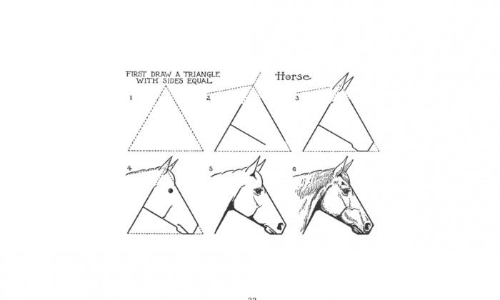 курсы-рисования-иллюс6