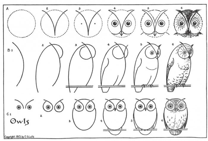 курсы-рисования-иллюс7