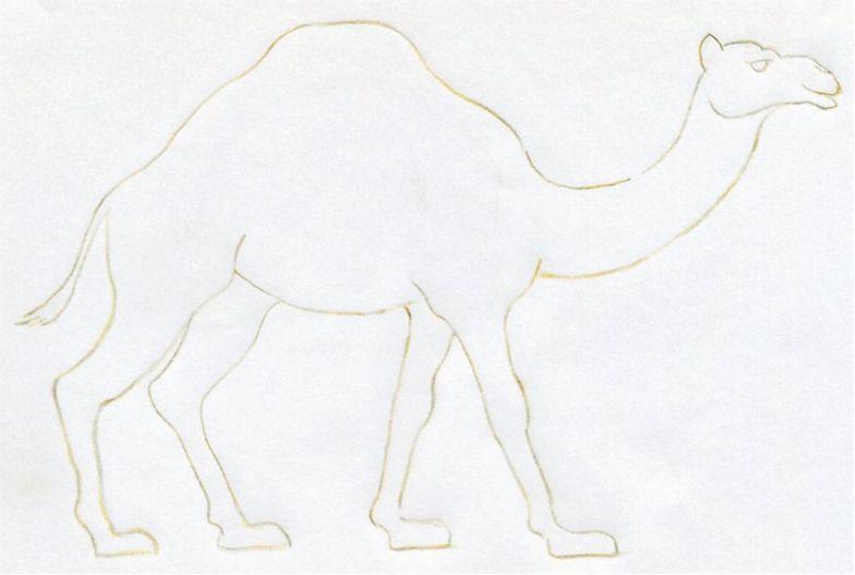 уроки-рисования-как-рисовать-верблюда