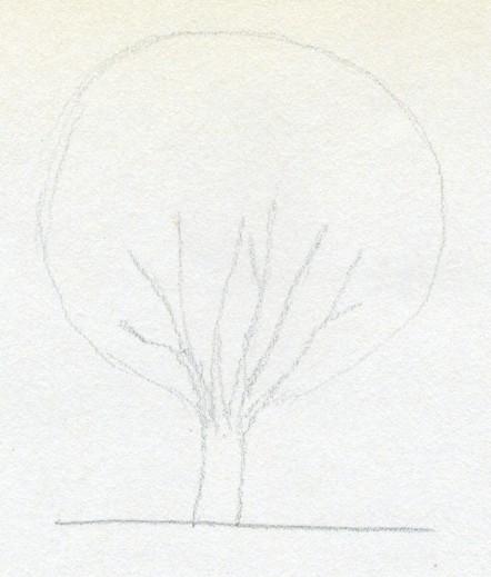Мастеркласс по рисованию маслом