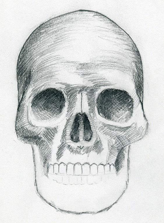 курсы-живописи-как-рисовать-череп