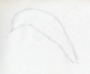 уроки-рисования-как-рисовать-дельфина2