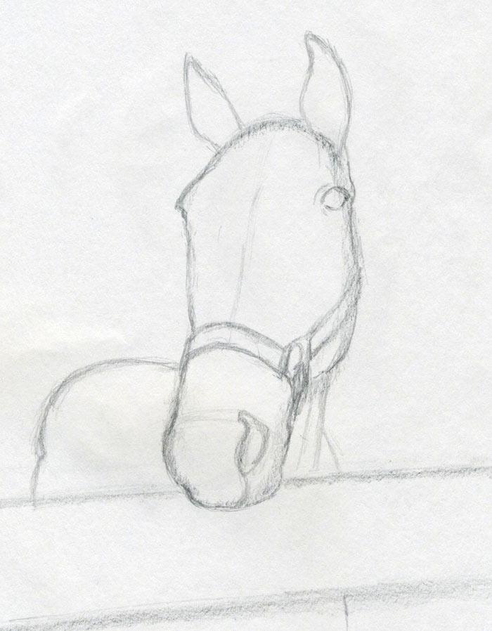 уроки-рисования-как-рисовать-лошадь