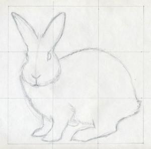 уроки-рисования-как-рисовать-кролика3
