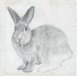 уроки-рисования-как-рисовать-кролика6
