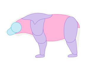 урок-рисования-как-рисовать-медведя5