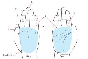 уроки-рисования-как-рисовать-руку (16)