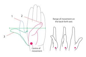 уроки-рисования-как-рисовать-руку (20)