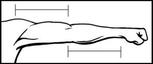 уроки рисования человека рука