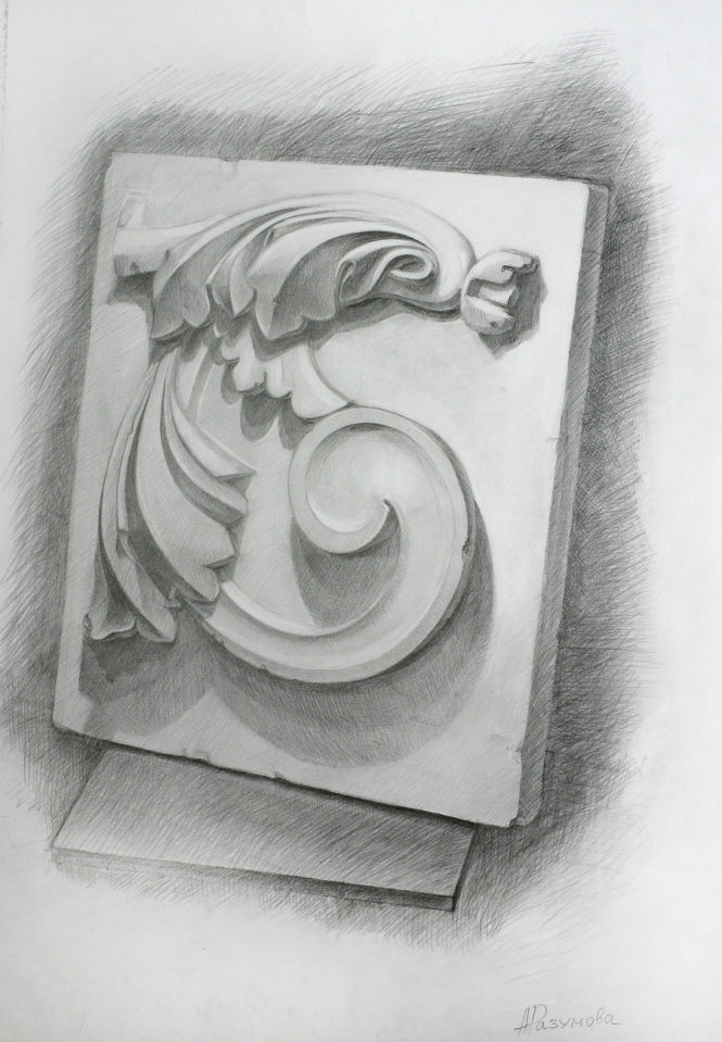 Розетка на курсах академического рисунка