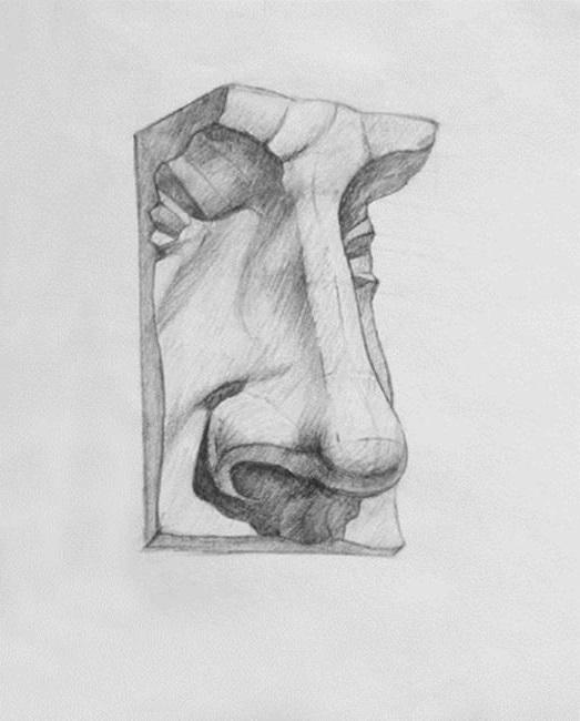 Пример академического рисунка карандашом носа Давида - гипс