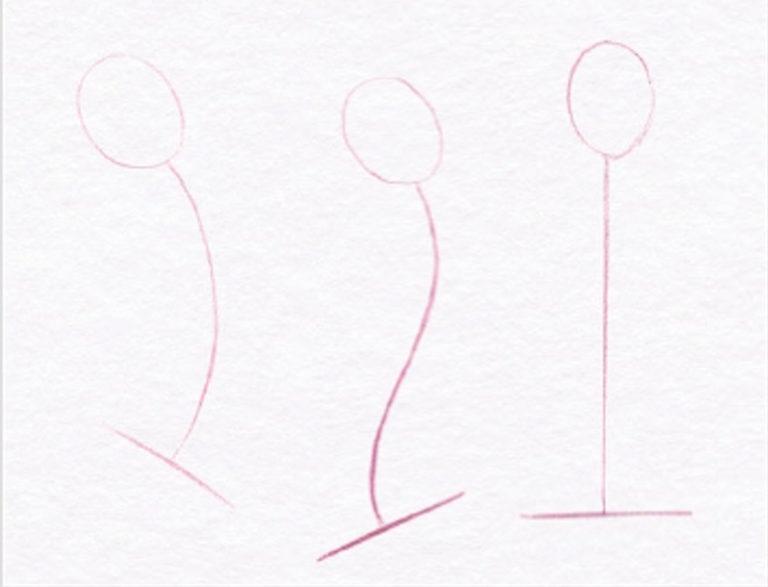 Академический рисунок торса человека линейным способом на курсах рисунка карандашом в Артакадемии Киев
