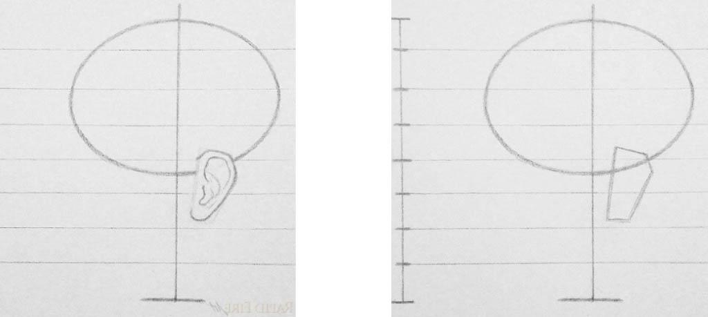 Как нарисовать голову карандашом Артакадемия