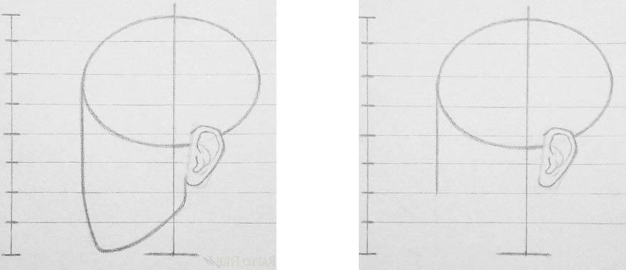 Курс академического рисунка головы Человека