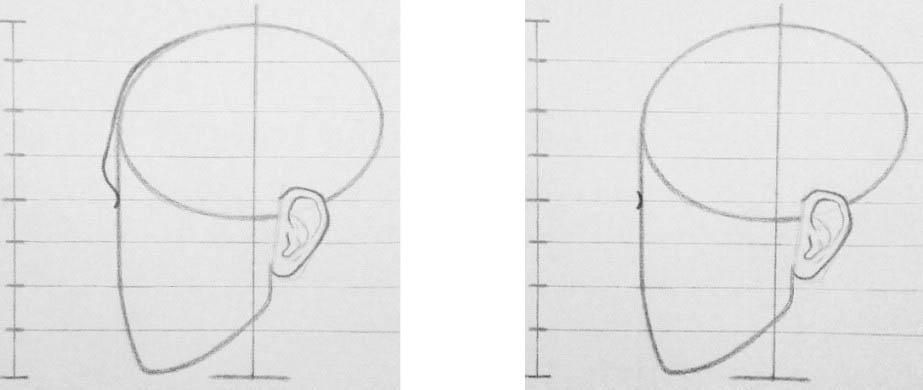 Урок академического рисунка головы человека Артакадемия
