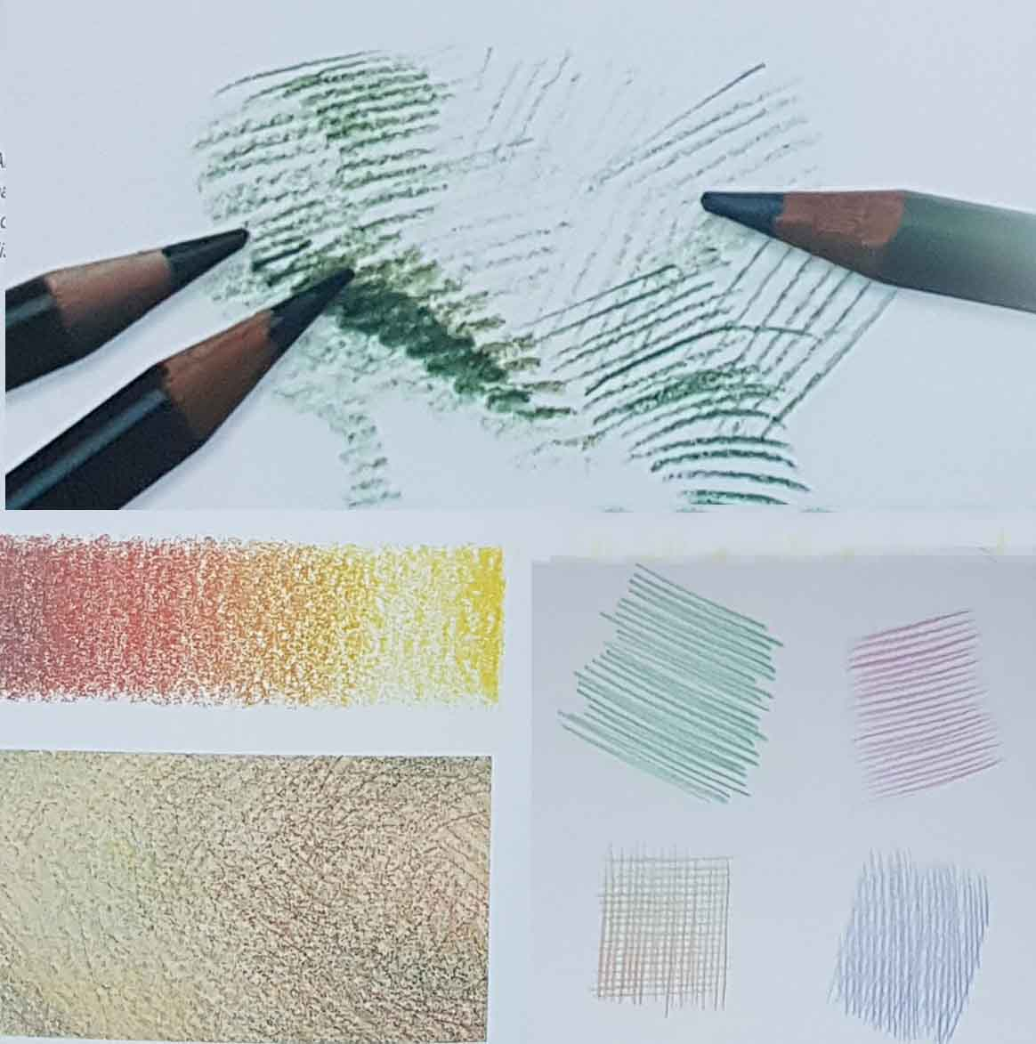 уроки академического рисунка цветным карандашом