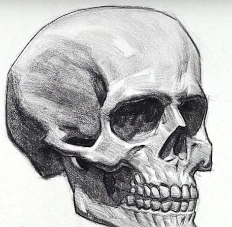 череп рисунок простой